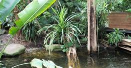 Zoo-Garten